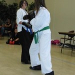 2011 Fall Tournament - Sparring 2